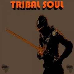 Tribal Soul - New Day